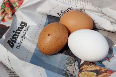 pullet_egg
