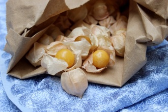 ground_cherry_bag
