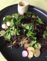 baby_turnip